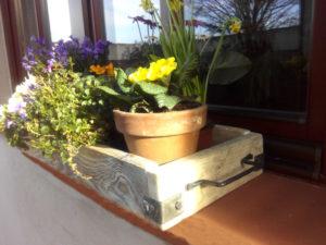 Truhlik-kvetnik-designovy