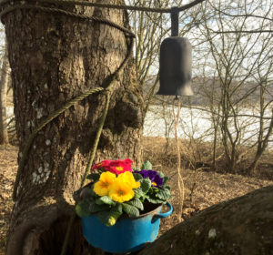 Zvonek-do-zvonicky